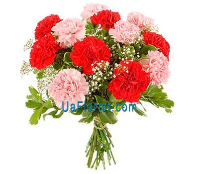 """Bouquet of flowers from 11 carnations"" in the online flower shop uaflorist.com"