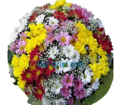 """Bouquet of flowers 25 chamomile chrysanthemums"" in the online flower shop uaflorist.com"