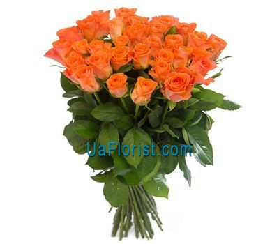 """37 orange roses"" in the online flower shop uaflorist.com"
