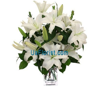 """Bouquet of 9 lilies of flowers"" in the online flower shop uaflorist.com"