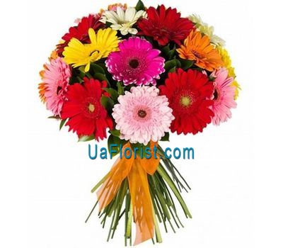"""Bouquet of 17 gerberas flowers"" in the online flower shop uaflorist.com"