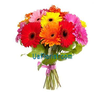 """Bouquet of flowers from 21 gerberas"" in the online flower shop uaflorist.com"