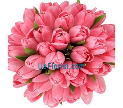 """Bouquet of 45 pink tulips"" in the online flower shop uaflorist.com"