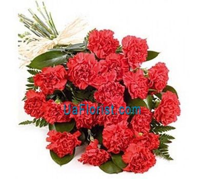 """Bouquet of flowers from 25 carnations"" in the online flower shop uaflorist.com"