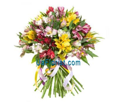 """Bouquet of flowers from 25 alstroemerias"" in the online flower shop uaflorist.com"