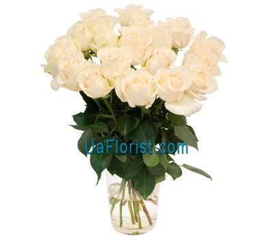 """15 white roses"" in the online flower shop uaflorist.com"