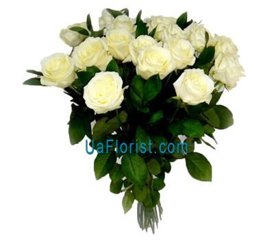 """19 white roses"" in the online flower shop uaflorist.com"