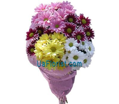 """Bouquet of flowers 5 chamomile (chamomile chrysanthemums)"" in the online flower shop uaflorist.com"
