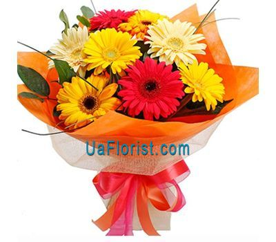 """A bunch of flowers of 9 gerberas"" in the online flower shop uaflorist.com"