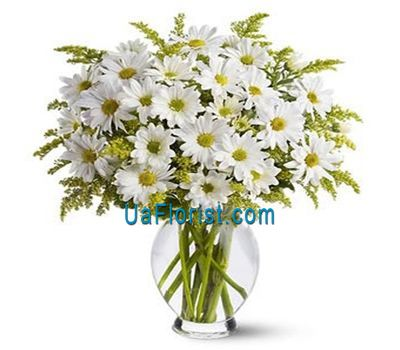 """A bouquet of 11 chamomile chrysanthemums"" in the online flower shop uaflorist.com"