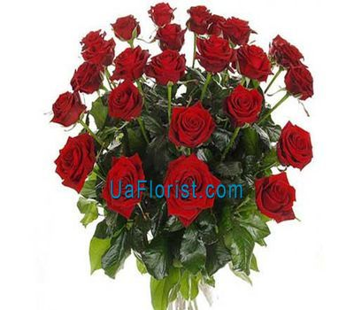 """19 red roses"" in the online flower shop uaflorist.com"