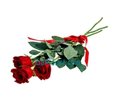 """3 roses"" in the online flower shop uaflorist.com"