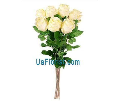 """7 cream roses"" in the online flower shop uaflorist.com"