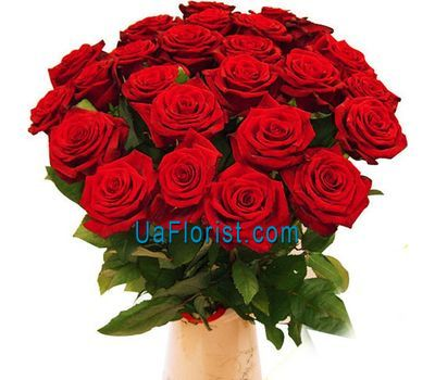 """25 red roses"" in the online flower shop uaflorist.com"
