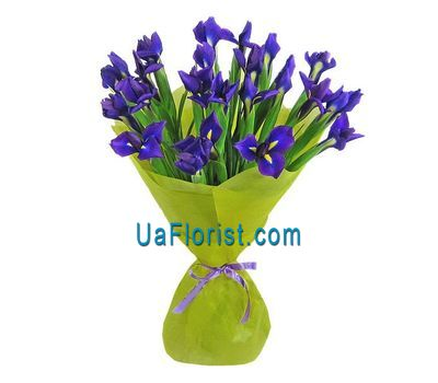 """A bunch of 21 blue irises"" in the online flower shop uaflorist.com"