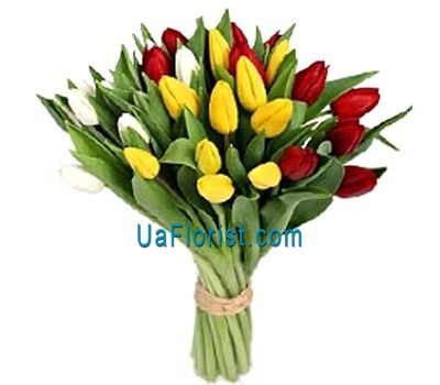 """Bouquet of 27 colorful tulips"" in the online flower shop uaflorist.com"