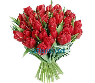 """Bouquet of 33 red tulips"" in the online flower shop uaflorist.com"