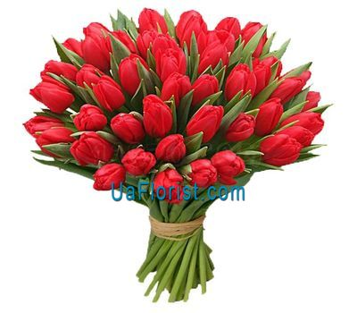"""Bouquet of 51 red tulips"" in the online flower shop uaflorist.com"
