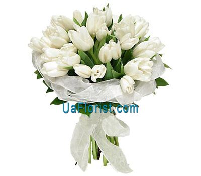 """Bouquet of 35 white tulips"" in the online flower shop uaflorist.com"