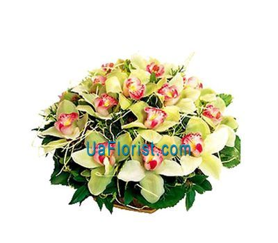 """Basket of flowers from 19 orchids"" in the online flower shop uaflorist.com"
