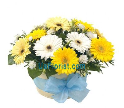 """Basket of flowers from 12 gerberas and 1 chrysanthemum"" in the online flower shop uaflorist.com"