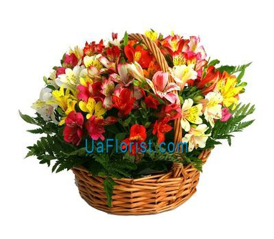 """Basket of flowers from 25 alstroemerias"" in the online flower shop uaflorist.com"
