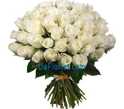 """55 white import roses"" in the online flower shop uaflorist.com"
