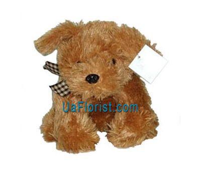 """""""Soft toy - Dog"""" in the online flower shop uaflorist.com"""