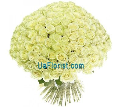 """A bunch of 201 white roses"" in the online flower shop uaflorist.com"