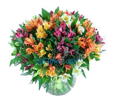 """Bouquet of 55 alstroemerias"" in the online flower shop uaflorist.com"
