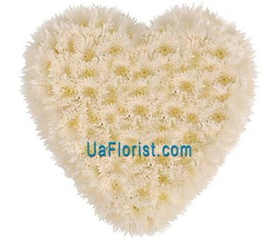 """Heart of 25 white chrysanthemums"" in the online flower shop uaflorist.com"
