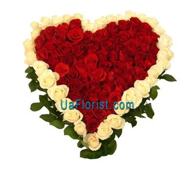 """Bouquet of 70 red and 35 white roses"" in the online flower shop uaflorist.com"