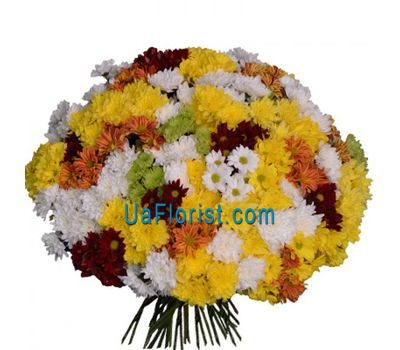"""Bouquet of 75 chrysanthemums"" in the online flower shop uaflorist.com"