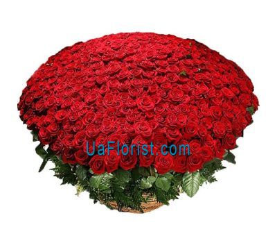 """501 red rose"" in the online flower shop uaflorist.com"