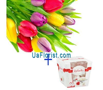 """11 tulips and candy"" in the online flower shop uaflorist.com"