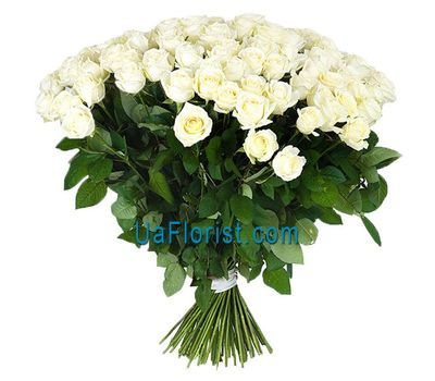 """A huge bouquet of 79 white roses"" in the online flower shop uaflorist.com"