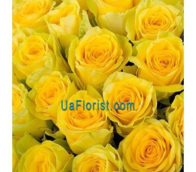 """""""Желтые розы поштучно"""" в интернет-магазине цветов uaflorist.com"""