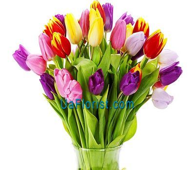 """Bouquet of 35 tulips"" in the online flower shop uaflorist.com"