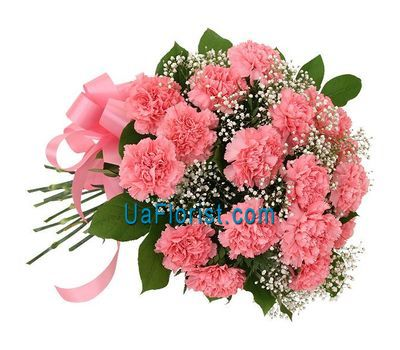 """Bouquet of flowers from 17 carnations"" in the online flower shop uaflorist.com"