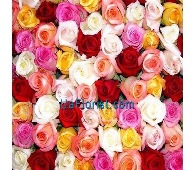 """Multicolored roses individually"" in the online flower shop uaflorist.com"
